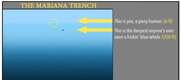 Things you didn't know about the ocean